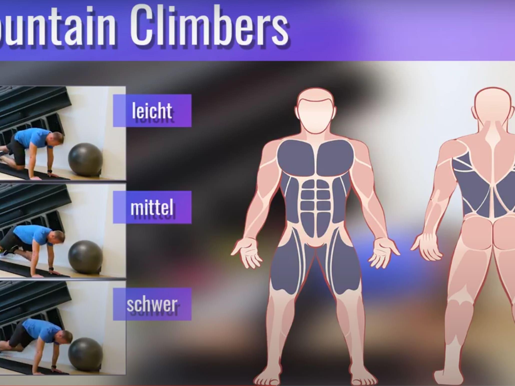 online-fitness-kurs-verschiedene-levels
